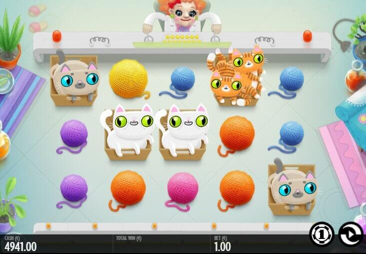 Not Enough Kittens slot review - play demo