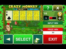 Crazy Monkey risk round